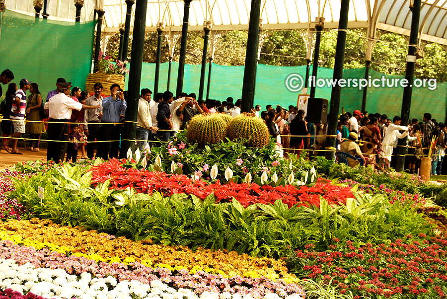 Flowers Circle-Lalbagh