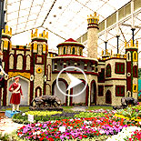 Lalbagh Flower show Independence Day Special August 2015