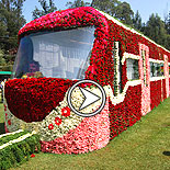 Ooty Flower Show 2014 Video