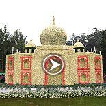 Ooty Flower Show 2015 Video