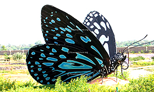 Trichy Butterfly Park
