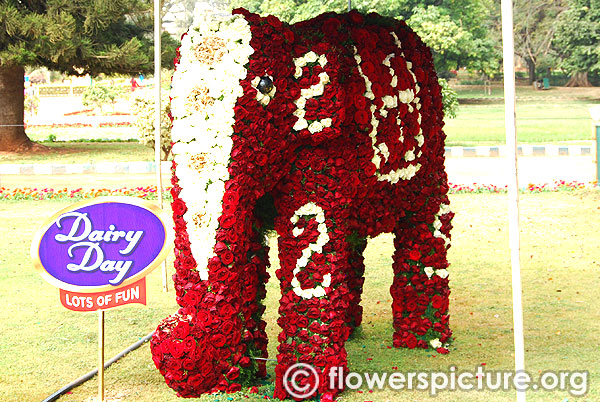 Floral elephant creation