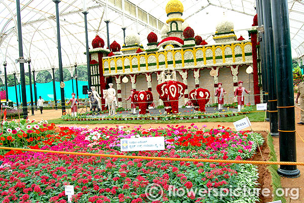 Panoramic view of lalbagh flower show august 2014