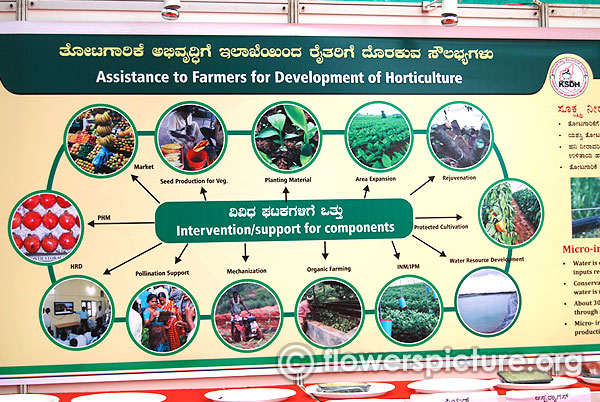 Assistance to farmers for development of horticulture invention for components lalbagh independence day flower show august 2015