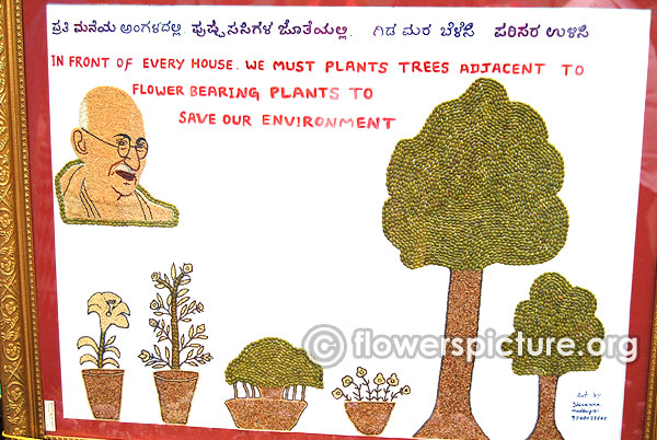 Save our environment plant trees seeds collage
