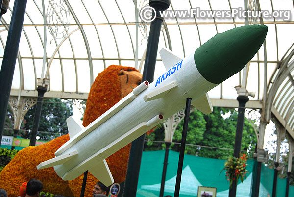 Wooden creation of akash missile