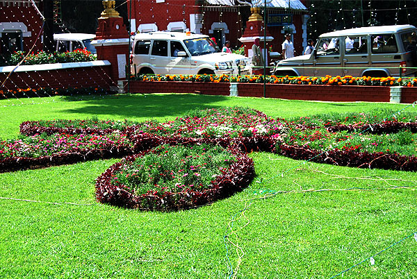 Dianthus flower decoration-Ground cover-Ooty flower show 2014