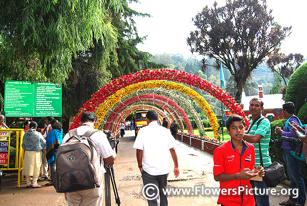 Floral arch summer festival 2017