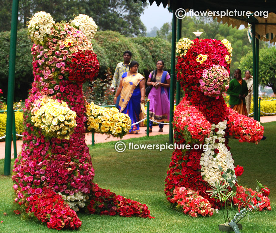 Floral bear ooty rose garden flower shows