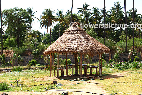 Hut in trichy butterfly park