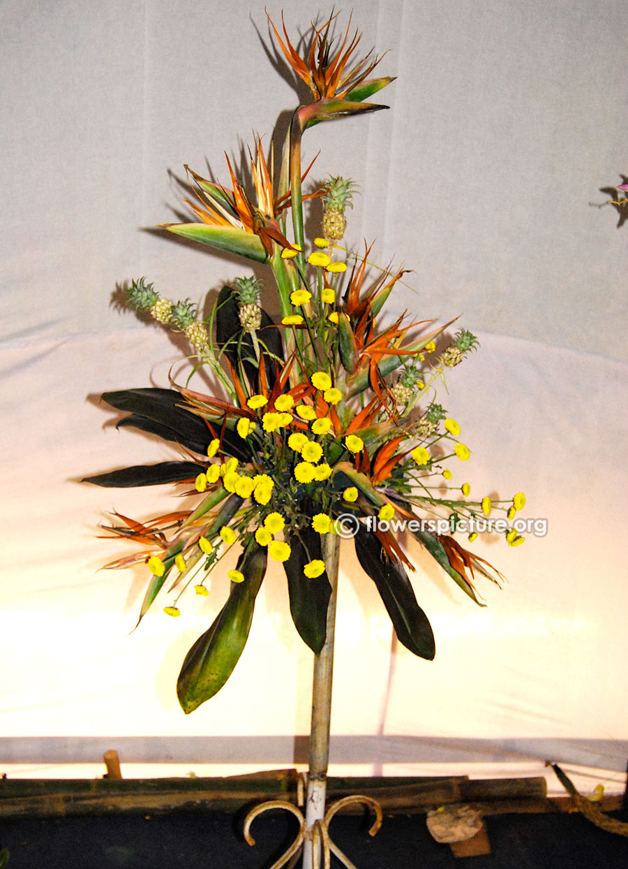 Pine apple bird of paradise flower vase